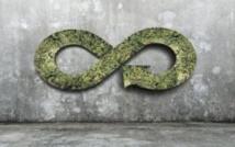 Les matériaux biosourcés, une réponse aux enjeux d'économie circulaire
