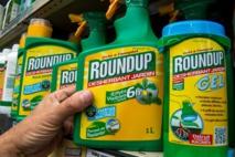 A partir du 1er janvier 2019 pour jardiner chez soi il sera interdit d'utiliser des pesticides de synthèse.