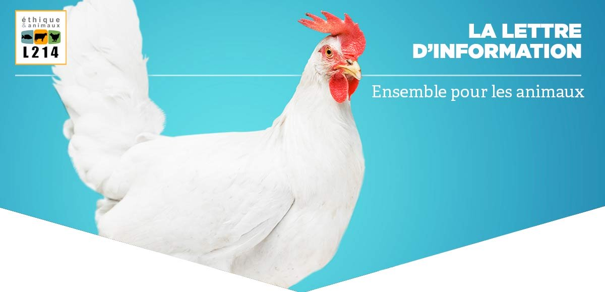 Ensemble, nous changeons les pratiques de l'industrie agroalimentaire !